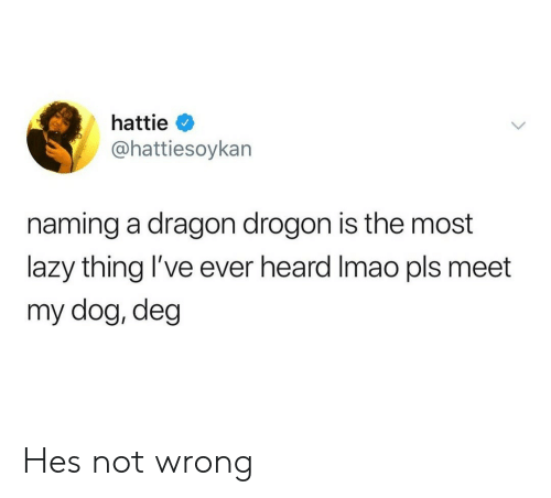 drogon: hattie  @hattiesoykan  naming a dragon drogon is the most  lazy thing 've ever heard Imao pls meet  my dog, deg Hes not wrong