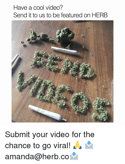 Memes, Videos, and Cool: Have a cool video?  Send it to us to be featured on HERB Submit your video for the chance to go viral! 🙏 📩amanda@herb.co📩