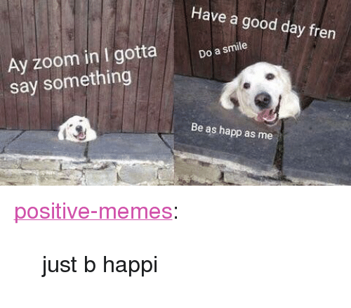 """Memes, Tumblr, and Zoom: Have a good day fren  Ay zoom in I gotta  say something  Do a smile  Be as happ as me <p><a href=""""https://positive-memes.tumblr.com/post/170304683930/just-b-happi"""" class=""""tumblr_blog"""">positive-memes</a>:</p>  <blockquote><p>just b happi</p></blockquote>"""