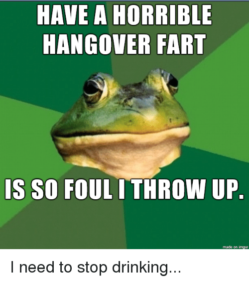 Hangover, Imgur, and Throw Up: HAVE A HORRIBLE  HANGOVER FART  IS SO FOUL I THROW UP  made on imgur I need to stop drinking...