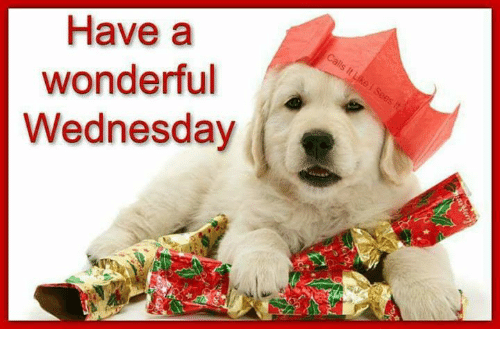Have A Wonderful Wednesday: Have a  wonderful  Wednesday