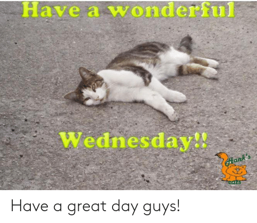 Have A Wonderful Wednesday: Have a wonderful  Wednesday!! Have a great day guys!