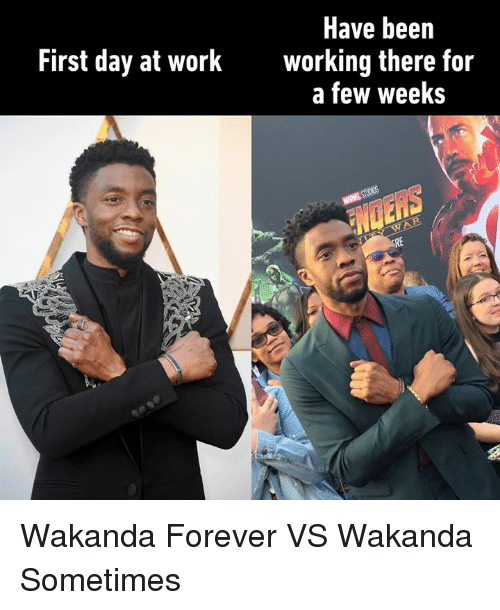 Dank, Work, and Forever: Have been  working there for  a few weeks  First day at work Wakanda Forever VS Wakanda Sometimes
