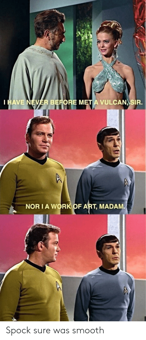 Spock: HAVE NEVER BEFORE M  VULCAN SIR.  NOR IA WORK OF ART, MADAM Spock sure was smooth