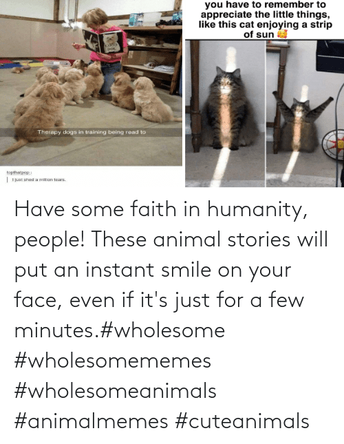 your face: Have some faith in humanity, people! These animal stories will put an instant smile on your face, even if it's just for a few minutes.#wholesome #wholesomememes #wholesomeanimals #animalmemes #cuteanimals