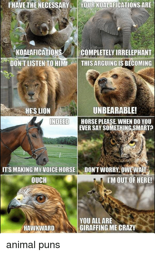 animal puns: HAVE THE NECESSARYYOUR KOALAFICATIONS ARE  KOALAFICATIONS/ COMPLETELY IRRELEPHANT  DON'T LISTEN TO HIMTHIS ARGUING IS BECOMING  HE'S LION  UNBEARABLE!  NDEED  HORSE PLEASE WHEN DO YOU  EVER SAY SOMETHING SMARTA  ITS MAKING MY VOICE HORSEDON'T WORRY, OWL WAIT  OUCH  I'M OUT OF HERE!  YOU ALL ARE  GIRAFFING ME CRAZY  HAWKWARD animal puns