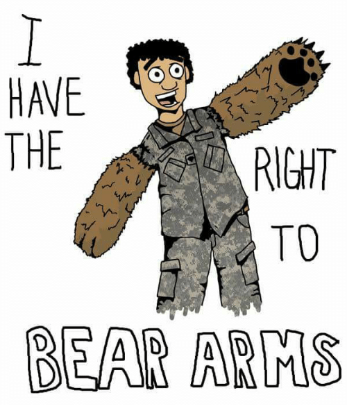 the issue of the right to bear arms in the united states How the right to bear arms got left out of the declaration of rights and how gun registration was decreed just in senior fellow at the independent institute.
