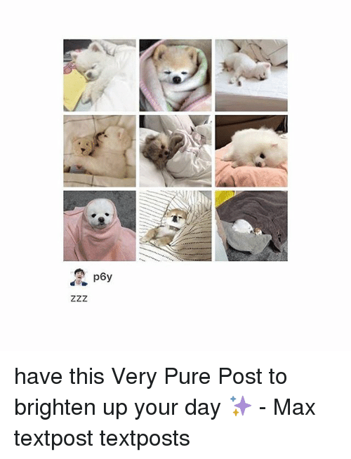 Memes, 🤖, and Day: have this Very Pure Post to brighten up your day ✨ - Max textpost textposts