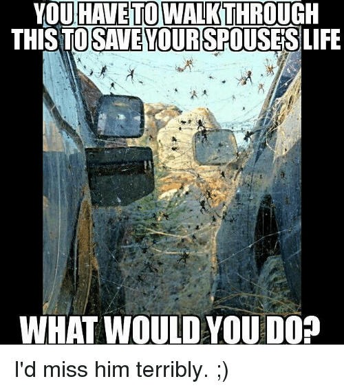 Dank, Life, and 🤖: HAVE TO WALK  YOU  THISTO  THROUGH  SAVE YOURSPOUSES  LIFE  WHAT WOULDYOU DO? I'd miss him terribly. ;)