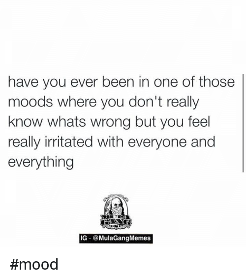 Whats Wrong: have you ever been in one of those  moods where you don't really  know whats wrong but you feel  really irritated with everyone and  everything  IG  MulaGang Memes #mood