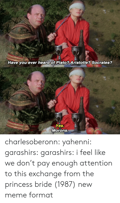 Socrates: Have you ever heard of Plato? Aristotle? Socrates?   Yes.  Morons. charlesoberonn: yahenni:  garashirs:  garashirs: i feel like we don't pay enough attention to this exchange from the princess bride (1987) new meme format