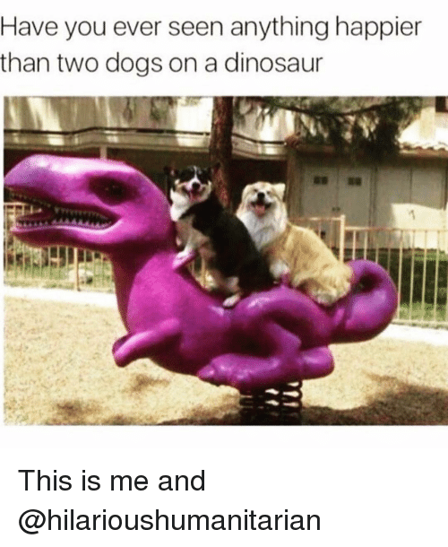 Funniest Meme You Have Ever Seen : Have you ever seen anything happier than two dogs on a