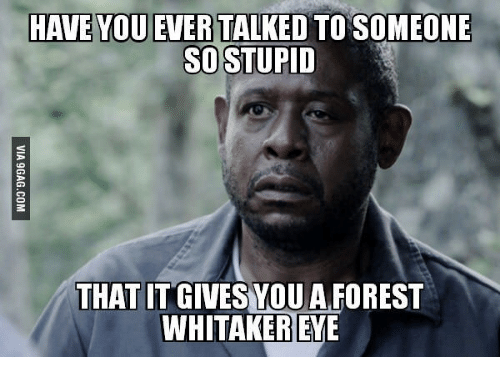 Forest Whitakers Eye: HAVE YOU EVER TALKED TO SOMEONE  SO STUPID  THAT IT GIVES YOU A FOREST  WHITAKER EYE