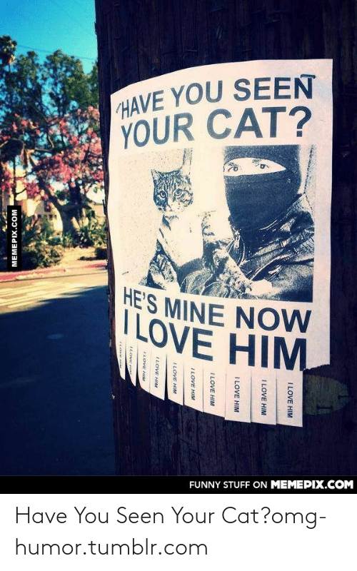 Mine Now: HAVE YOU SEEN  YOUR CAT?  HE'S MINE NOW  ILOVE HIM  FUNNY STUFF ON MEMEPIX.COM  I LOVE HIM  I LOVE HIM  I LOVE HIM  ILOVE HIM  ILOVE HIM  ILOVE HIM  ILOVE HIM  ILOVE H  TLOVE He  LOVE H  MEMEPIX.COM Have You Seen Your Cat?omg-humor.tumblr.com