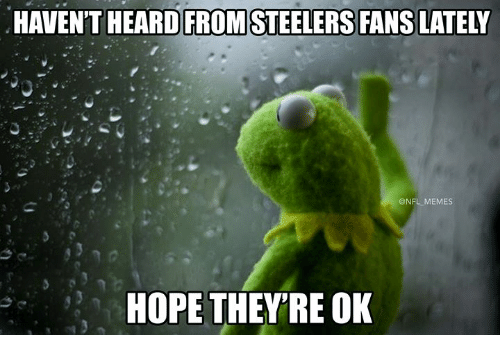Memes, Nfl, and Steelers: HAVEN'T HEARD FROM STEELERS FANS LATELY  @NFL MEMES  HOPE THEY'RE OK