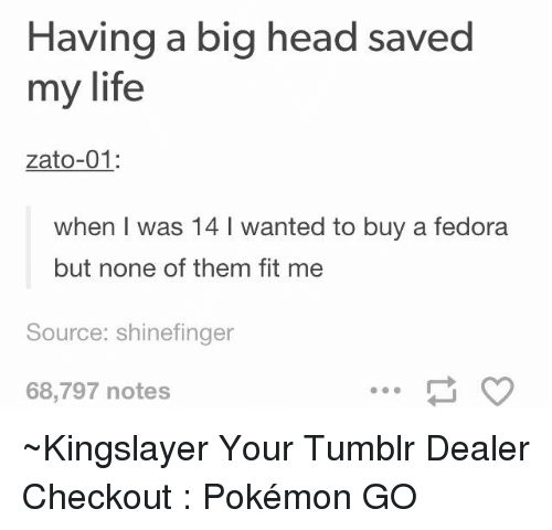 Fedora, Head, and Life: Having a big head saved  my life  zato-01  when I was 14 l wanted to buy a fedora  but none of them fit me  Source: shinefinger  68,797 notes ~Kingslayer Your Tumblr Dealer  Checkout : Pokémon GO
