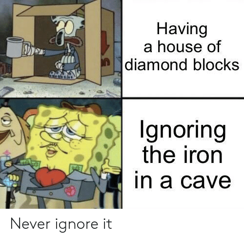 ignoring: Having  a house of  |diamond blocks  Ignoring  the iron  in a cave Never ignore it