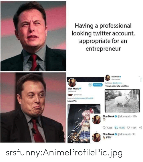 Entrepreneur: Having a professional  looking twitter account,  appropriate for an  entrepreneur  Eion Musk o  elonmus  Replying to echei  I'm an absolute unit too  Elon Musk  leplying to @land  New uWu  Elon Musk O @elonmusk 17h  0  04,036 tュ15.9K 142K  Elon Musk @elonmusk-9h srsfunny:AnimeProfilePic.jpg