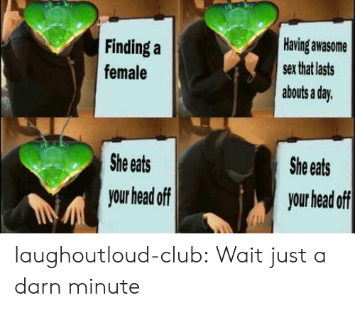 Eats: Having awasome  Finding a  sex that lasts  female  abouts a day.  She eats  She eats  your head off  your head off laughoutloud-club:  Wait just a darn minute