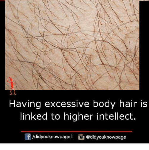 Memes, Hair, and 🤖: Having excessive body hair is  linked to higher intellect.  /didyouknowpagel