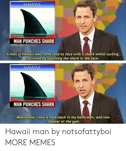 Hawaii: HAWAII  MAN PUNCHES SHARK  A man in Hawaii who came face to face with a shark whilst surfing,  survived by punching the shark in the face.  HAWAI  MAN  PUNCHES SHARK  Meanwhile, I sawa cockroach in my bathroom, and now  I shower at the gym. Hawaii man by notsofattyboi MORE MEMES