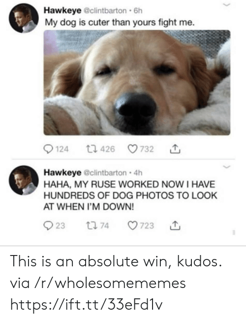 hawkeye: Hawkeye @clintbarton 6h  My dog is cuter than yours fight me  124  732  t1 426  Hawkeye @clintbarton 4h  HAHA, MY RUSE WORKED NOW I HAVE  HUNDREDS OF DOG PHOTOS TO LOOK  AT WHEN I'M DOWN!  23  t 74  723 This is an absolute win, kudos. via /r/wholesomememes https://ift.tt/33eFd1v