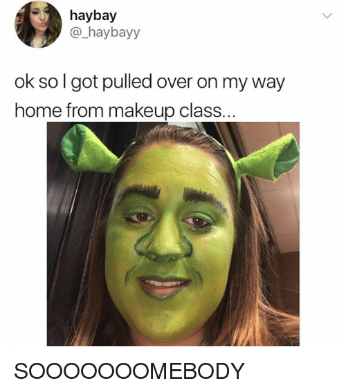 Makeup, Memes, and Home: haybay  @_haybayy  ok so l got pulled over on my way  home from makeup class. SOOOOOOOMEBODY
