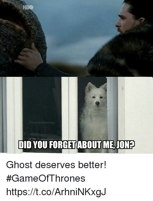 ghostly: HBO  ThronesMemes  DID YOU FORGETABOUT ME,JON? Ghost deserves better! #GameOfThrones https://t.co/ArhniNKxgJ