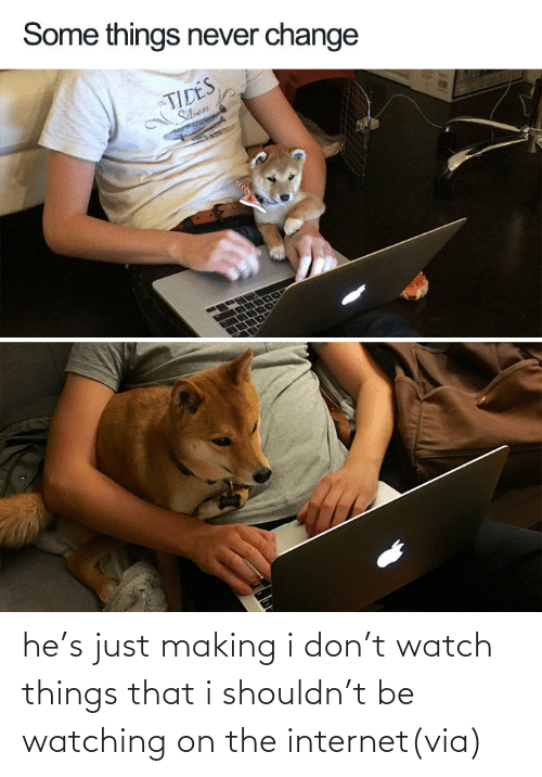 bird: he's just making i don't watch things that i shouldn't be watching on the internet(via)