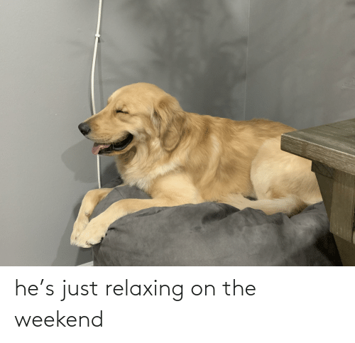 Just Relaxing: he's just relaxing on the weekend
