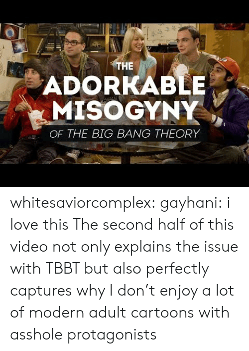 The Big Bang Theory: HE  ADORKABLE  MISOGYNY  OF THE BIG BANG THEORY whitesaviorcomplex:  gayhani: i love this The second half of this video not only explains the issue with TBBT but also perfectly captures why I don't enjoy a lot of modern adult cartoons with asshole protagonists