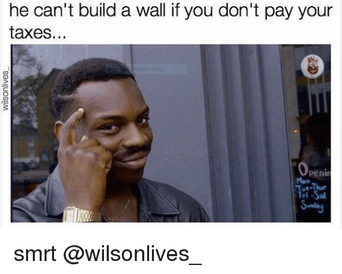 Build A Wall: he can't build a wall if you don't pay your  taxes  Openin smrt @wilsonlives_