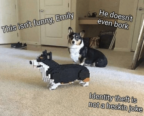 Emily: He doesn't  even bork  This isn't funny, Emily  Identity theft is  not a heckin joke