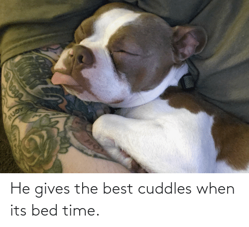 bed time: He gives the best cuddles when its bed time.