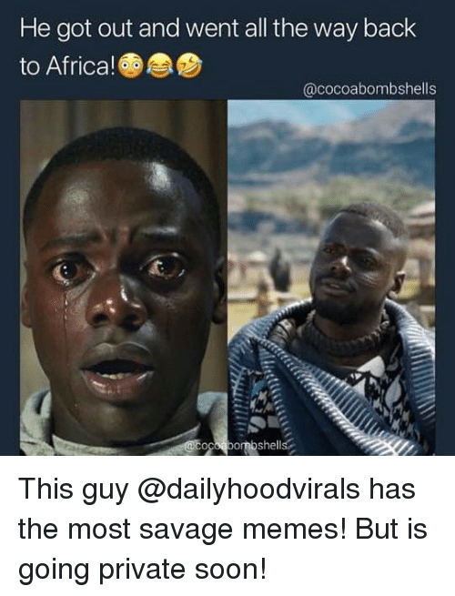 Africa, Memes, and Savage: He got out and went all the way back  to Africa!  @cocoabombshells This guy @dailyhoodvirals has the most savage memes! But is going private soon!