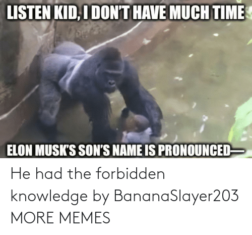 He Had: He had the forbidden knowledge by BananaSlayer203 MORE MEMES