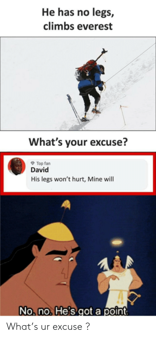 Whats Your Excuse: He has no legs,  climbs everest  What's your excuse?  O Top fan  David  His legs won't hurt, Mine will  No, no. He's got a point What's ur excuse ?