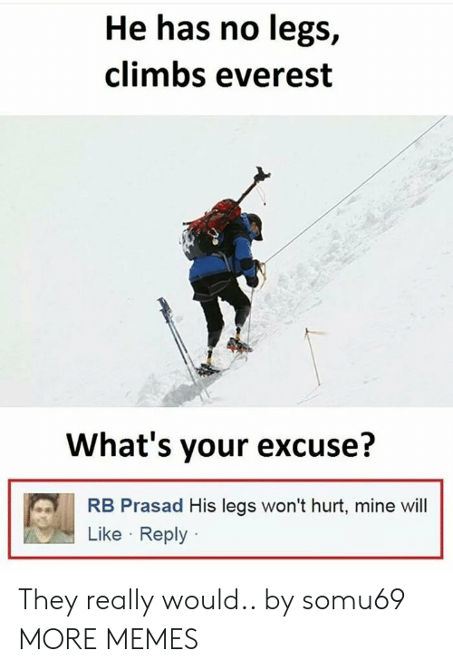 Whats Your Excuse: He has no legs,  climbs everest  What's your excuse?  RB Prasad His legs won't hurt, mine wil  Like Reply They really would.. by somu69 MORE MEMES