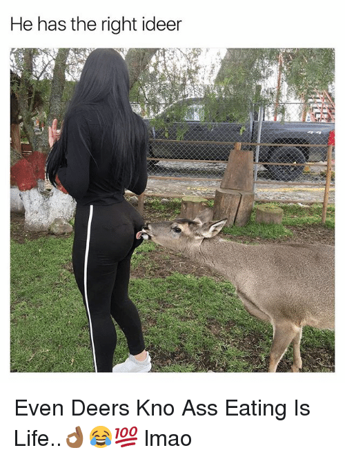 Ass, Ass Eating, and Life: He has the right ideer Even Deers Kno Ass Eating Is Life..👌🏾😂💯 lmao