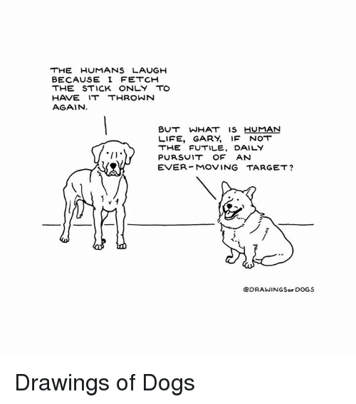 sticked: HE HUMANS LAUGH  BECAUSE I FETCH  THE STICK ONLY TO  HAVE IT THROWN  AGAIN  BUT WHAT Is HUMAN  LIFE, GARY, IF NOT  THE FUTILE, DAILY  PURSUI.T OF AN  EVER MOVING TARGET?  @DRAWINGSor DOGS Drawings of Dogs