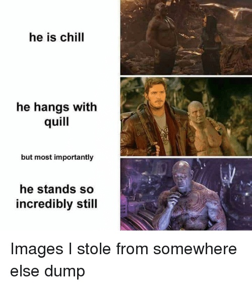 Quill: he is chil  he hangs with  quill  but most importantly  he stands so  incredibly still Images I stole from somewhere else dump