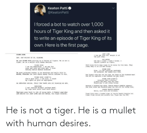 mullet: He is not a tiger. He is a mullet with human desires.