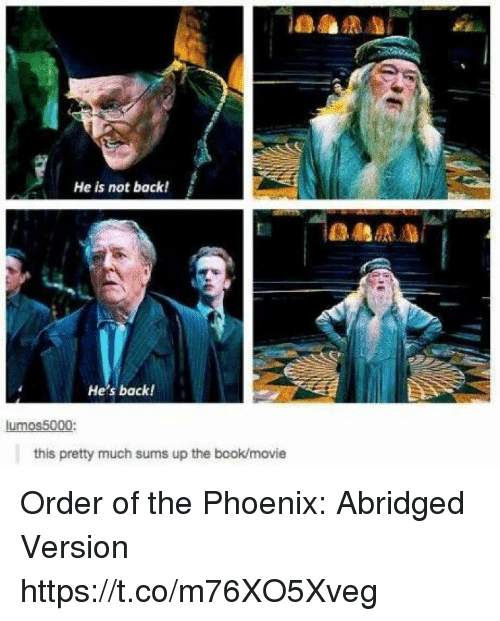 orderly: He is not back!  He's back!  lumos5000:  this pretty much sums up the book/movie Order of the Phoenix: Abridged Version https://t.co/m76XO5Xveg