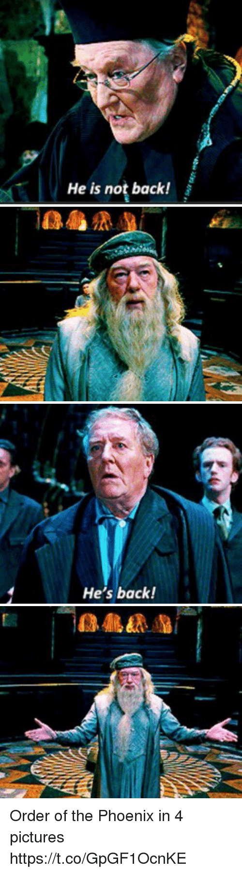 4 Pictures: He is not back!   n  a)   He's back! Order of the Phoenix in 4 pictures https://t.co/GpGF1OcnKE