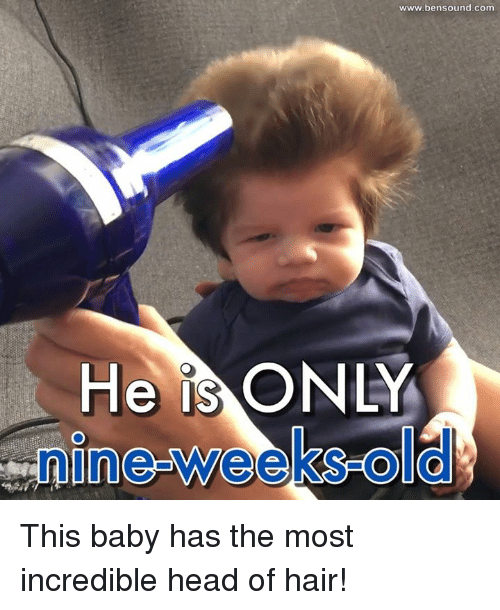Baby, It's Cold Outside, Head, and Memes: He IS  O  www.bensound com This baby has the most incredible head of hair!