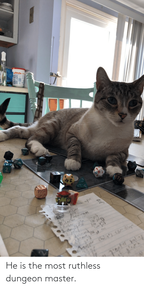 Dungeon Master: He is the most ruthless dungeon master.