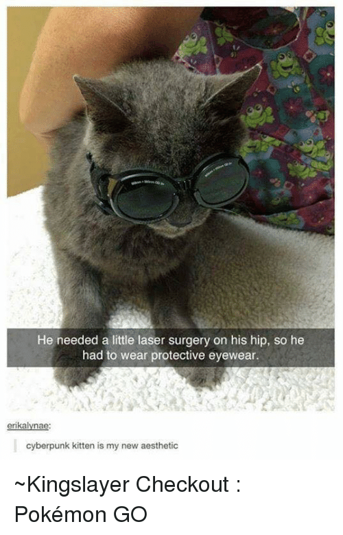 new-aesthetic: He needed a little laser surgery on his hip, so he  had to wear protective eyewear.  erikalyna  cyberpunk kitten is my new aesthetic ~Kingslayer  Checkout : Pokémon GO