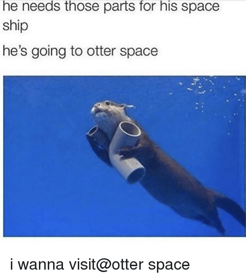 Otter Space: he needs those parts for his space  ship  he's going to otter space i wanna visit@otter space