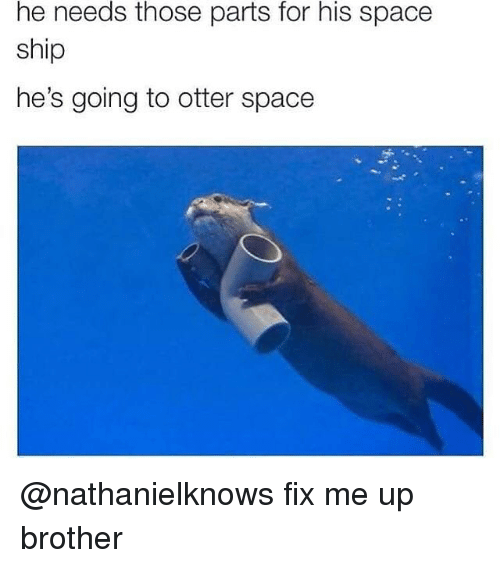 Otterly: he needs those parts for his space  ship  he's going to otter space @nathanielknows fix me up brother
