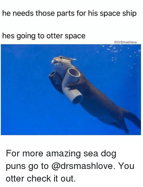 Thoses: he needs those parts for his space ship  hes going to otter space  @DrSmashlove For more amazing sea dog puns go to @drsmashlove. You otter check it out.